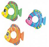 حلقه شنای ماهی